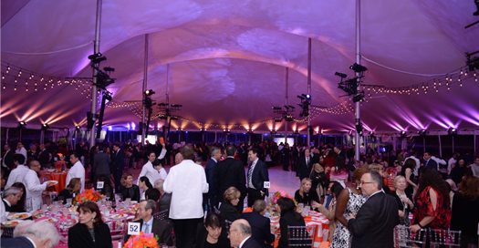Mount Sinai Health System's 32nd Annual Crystal Party